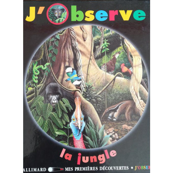 J'observe la jungle